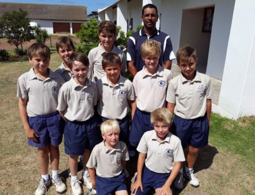 Several St Francis College Cricketers Make Kouga Cricket Performance Team Selection